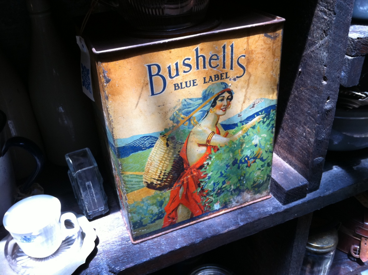 Good ole Bushells tea - Seasonal Concepts - 122 Redfern Street Redfern